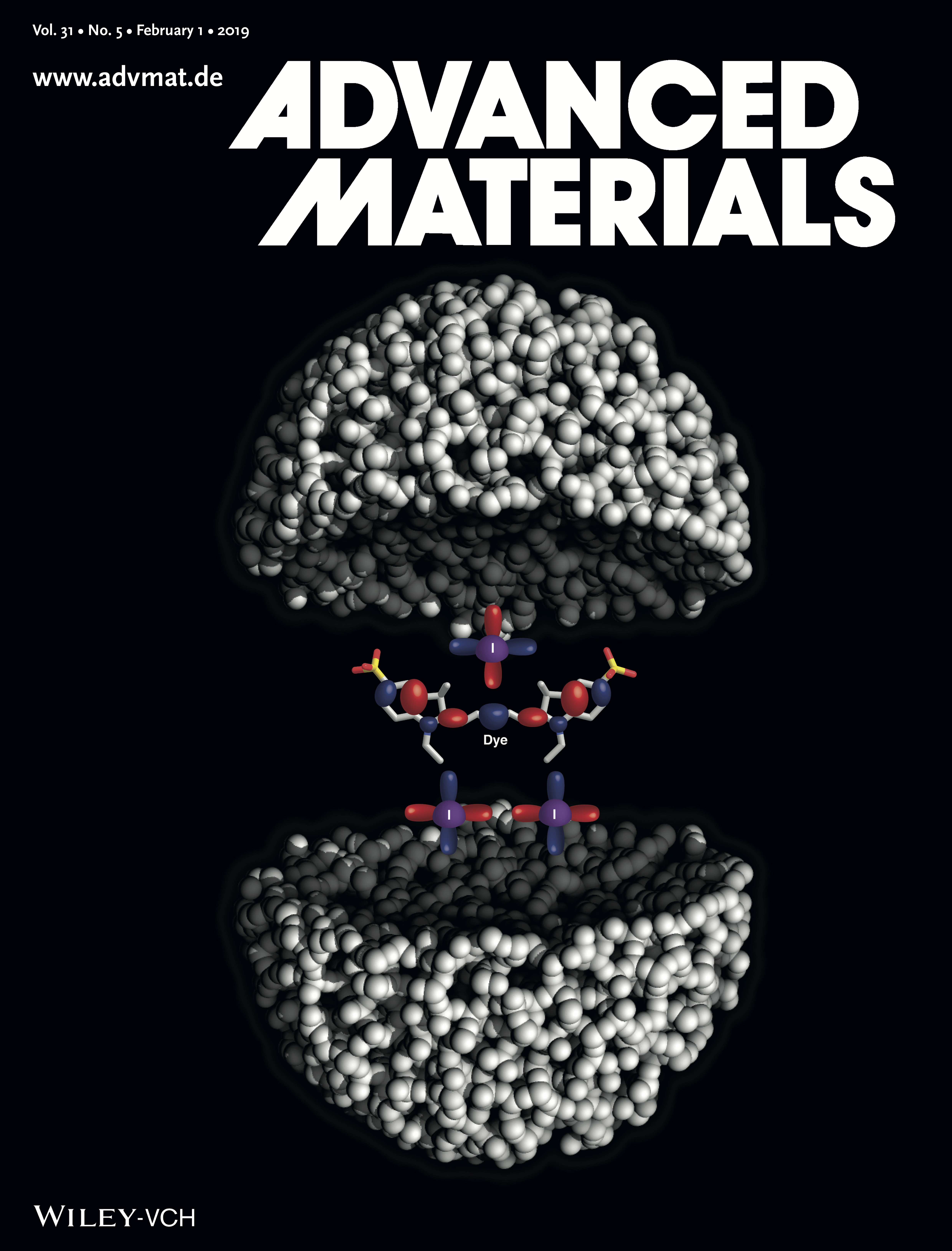 Advanced Materials (02/2019 cover)